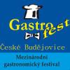 CESK na Gastrofestu 2011